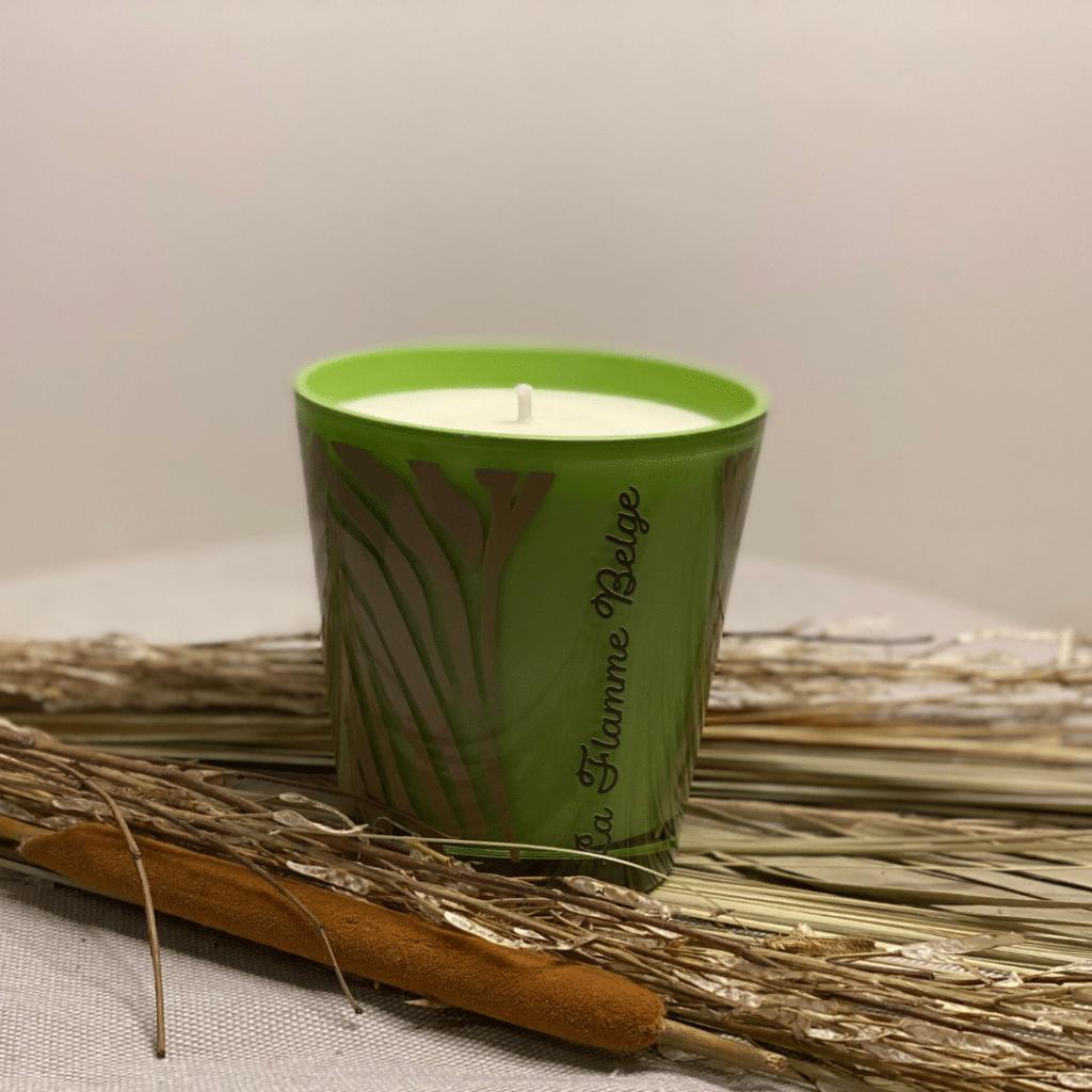 animal-vert